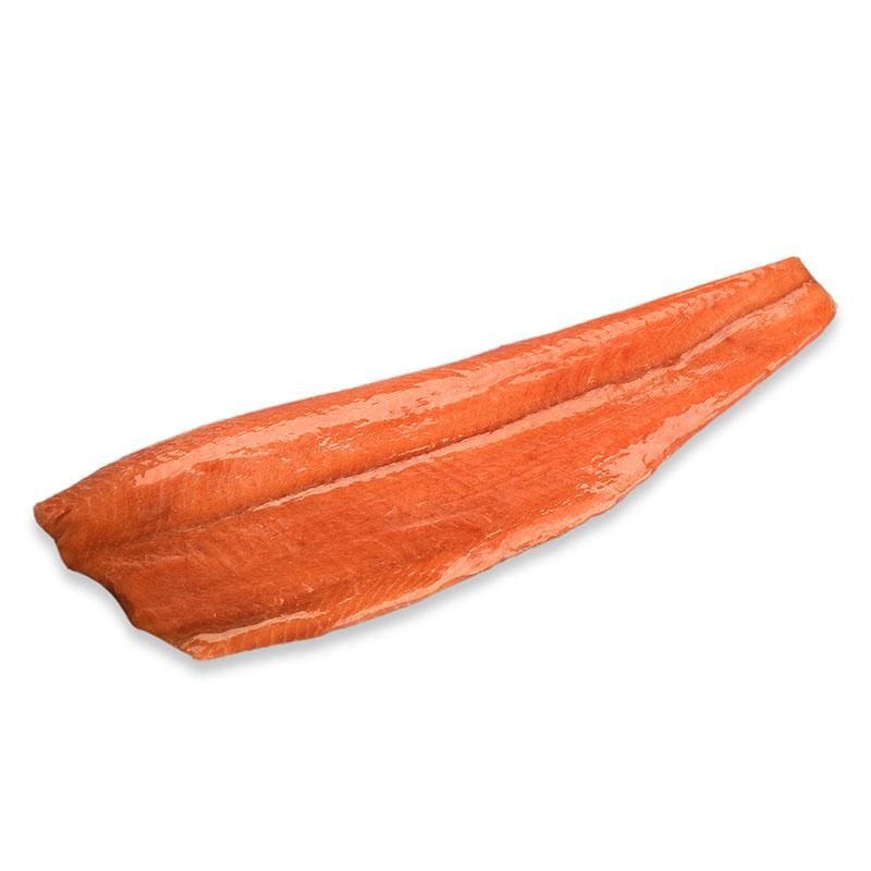 Chum Salmon Featured Image
